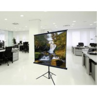 Prowite Tripod Projection Screen (Square) 1.5m x 1.5m