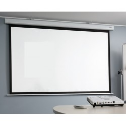 Deluxe electric projection...